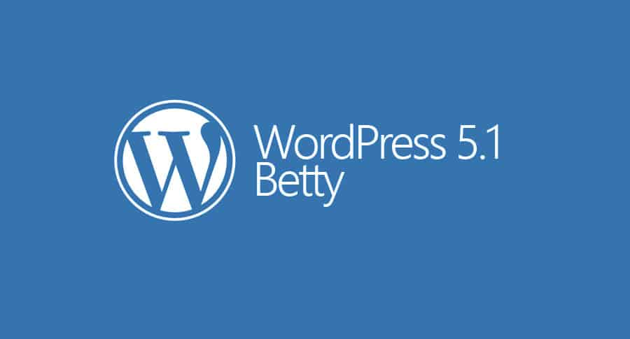 Actualización WordPress 5.1